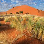 Wüste Namibia
